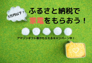 【ふるさと納税2019】寄付金5万円以下!電化製品のおすすめ紹介!
