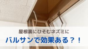 【ネズミ駆除】屋根裏のねずみにバルサンで効果ある?おすすめの対処法